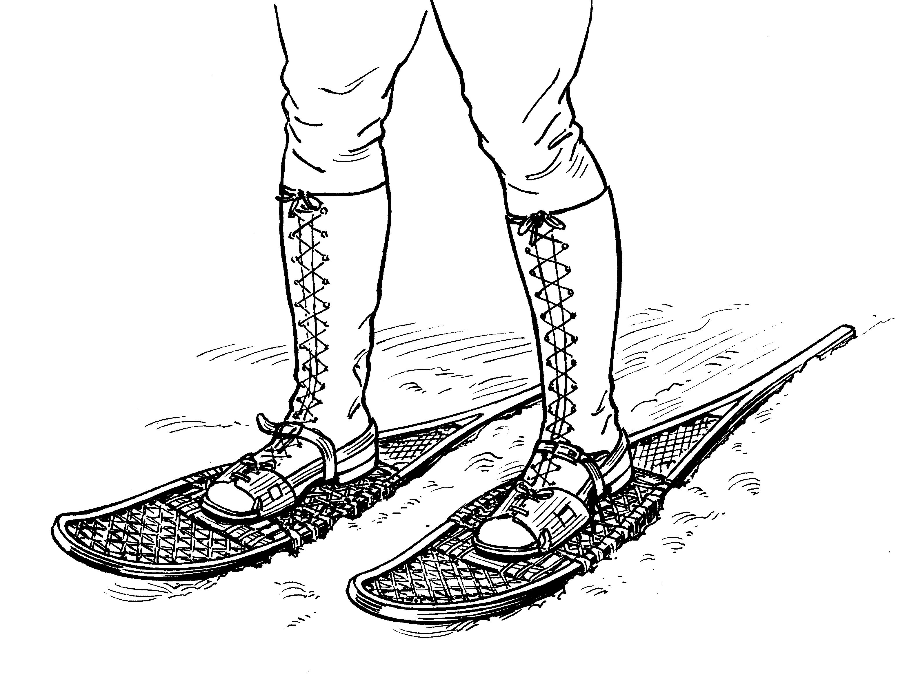File:Snowshoe (PSF).png