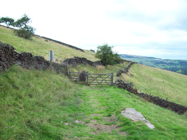 Track to the north of Eccles Pike - geograph.org.uk - 1447133