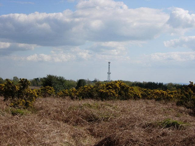 View from Pylons Car Park - Ashdown Forest - geograph.org.uk - 161720
