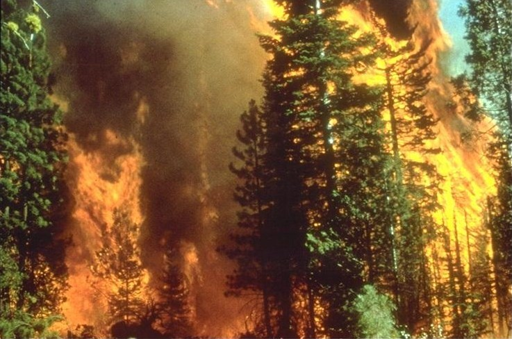 File:Wildfire in California.jpg