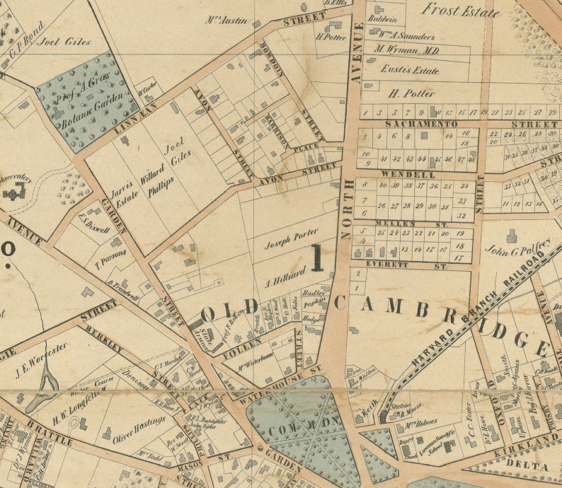 File:1854 AsaGray CambridgeMA map byWalling BPL 12775.png ... on