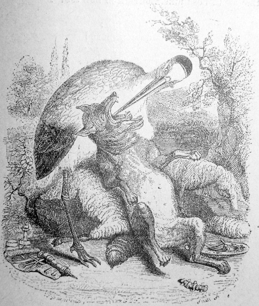 le loup et la cigogne  u2014 wikip u00e9dia
