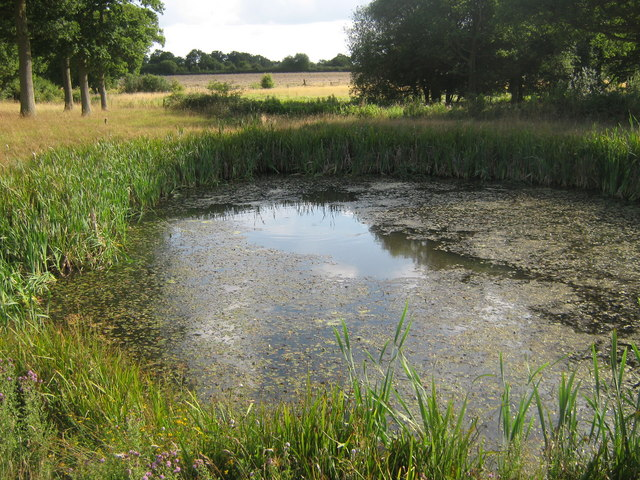 File A Series Of Farm Ponds In Oaklands Farm Geograph