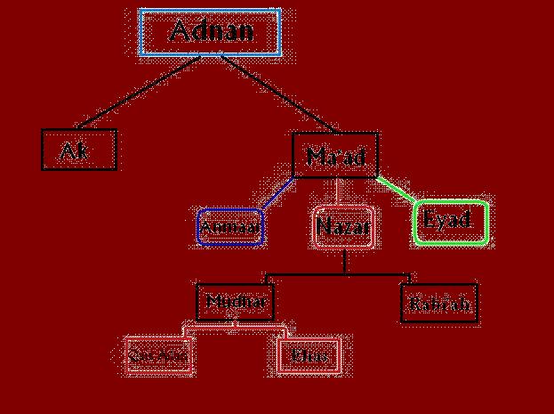 Adnanites - Wikipedia