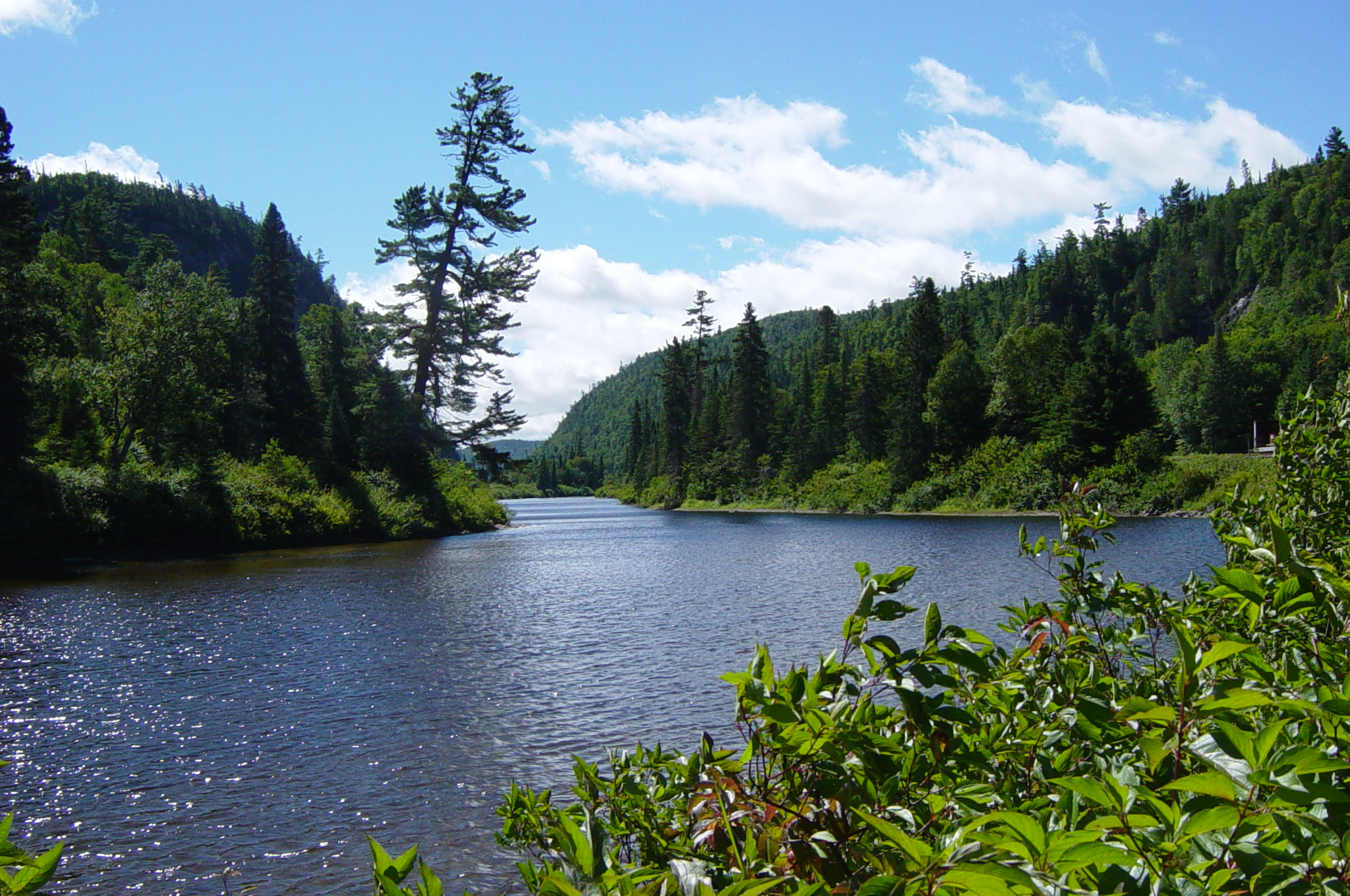 File:Agawa River, Ontario.jpg  Wikimedia Commons