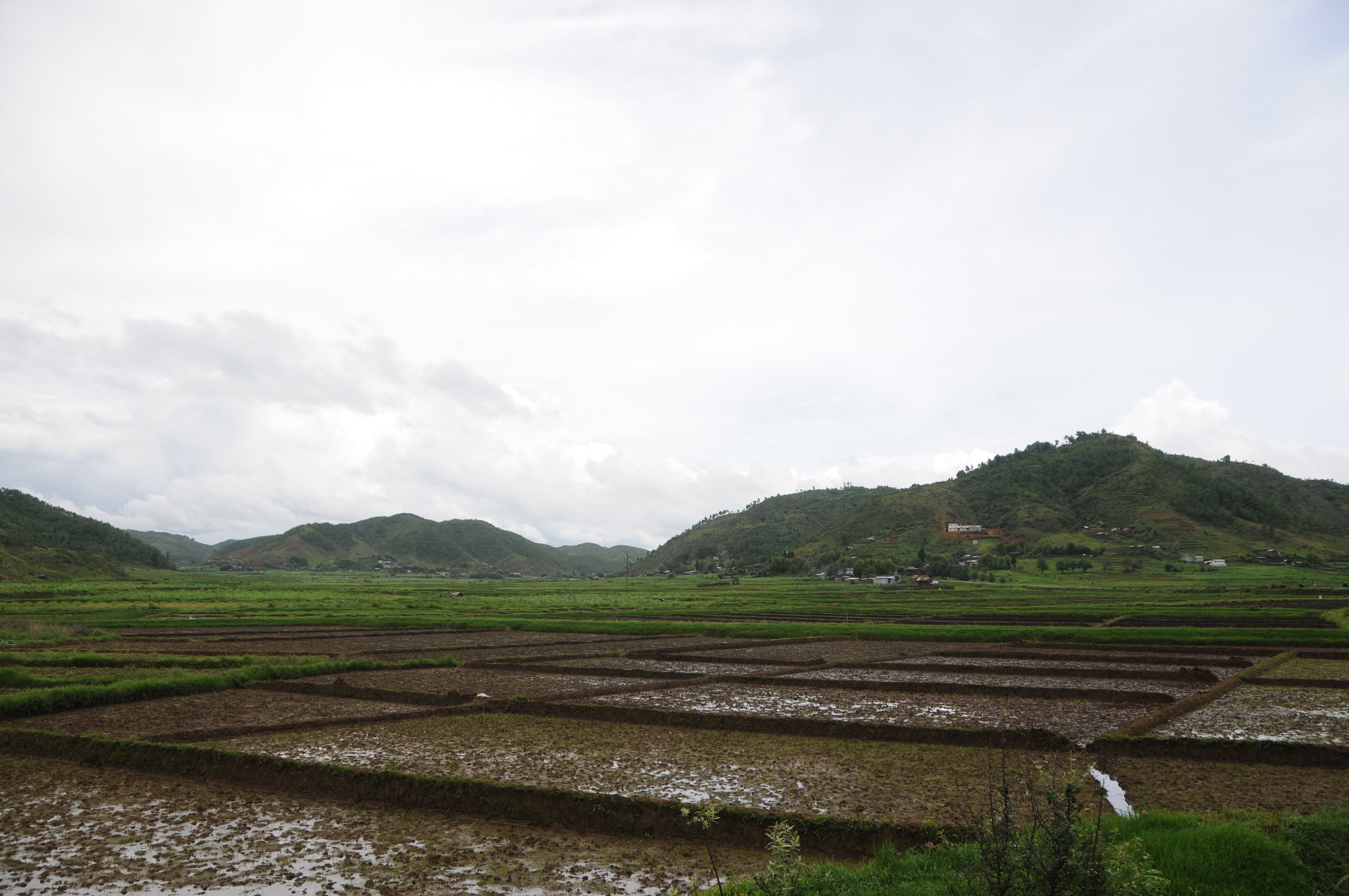 Agriculture in Meghalaya. Photo credit: Sharada Prasad CS/Wikimedia Commons [Licensed under CC BY 2.0]