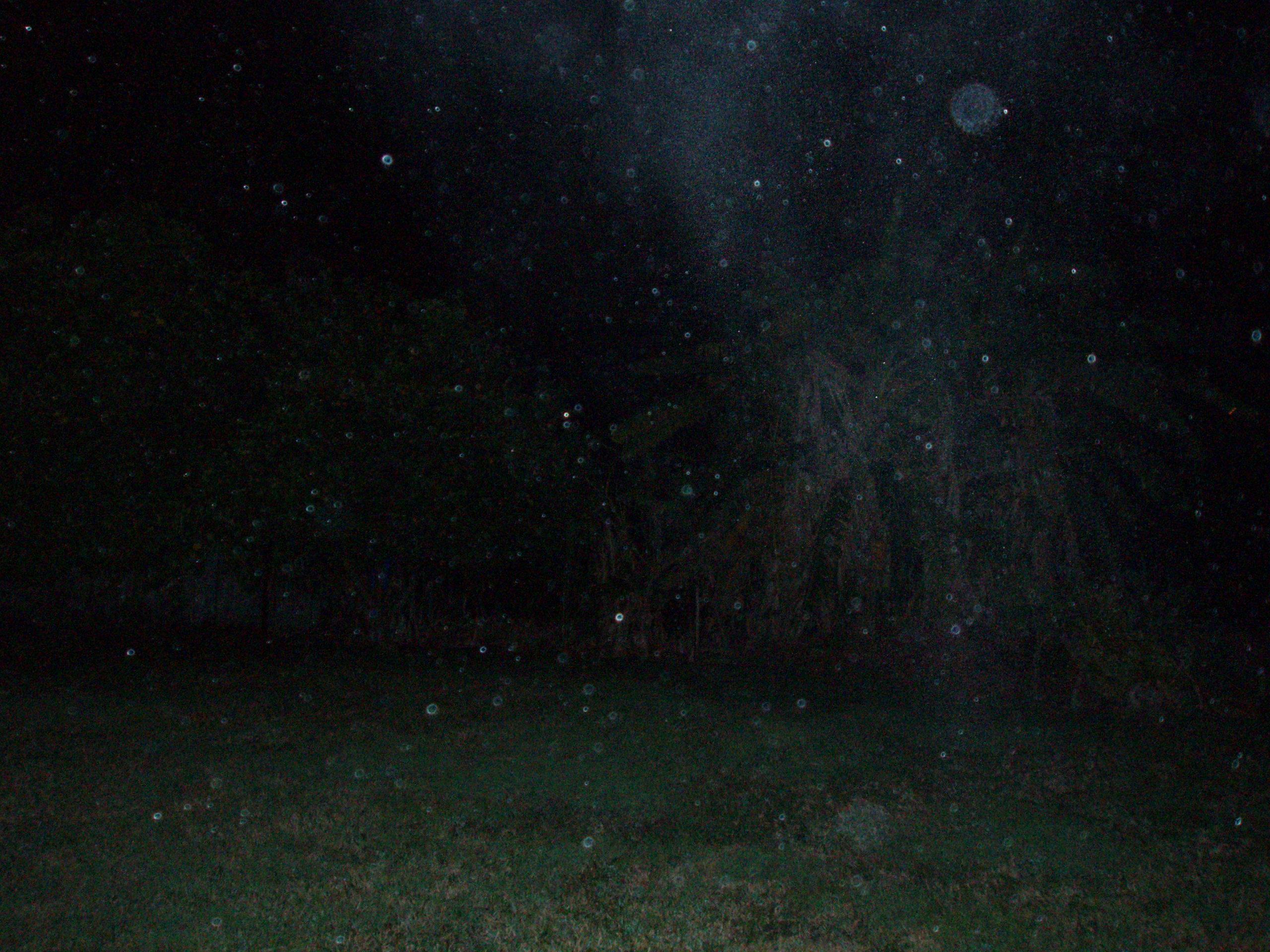 2010: Le 19/08 vers 22h30 - observation dans les landes - Pontonx sur l'Adour- (40) CharcoalDust