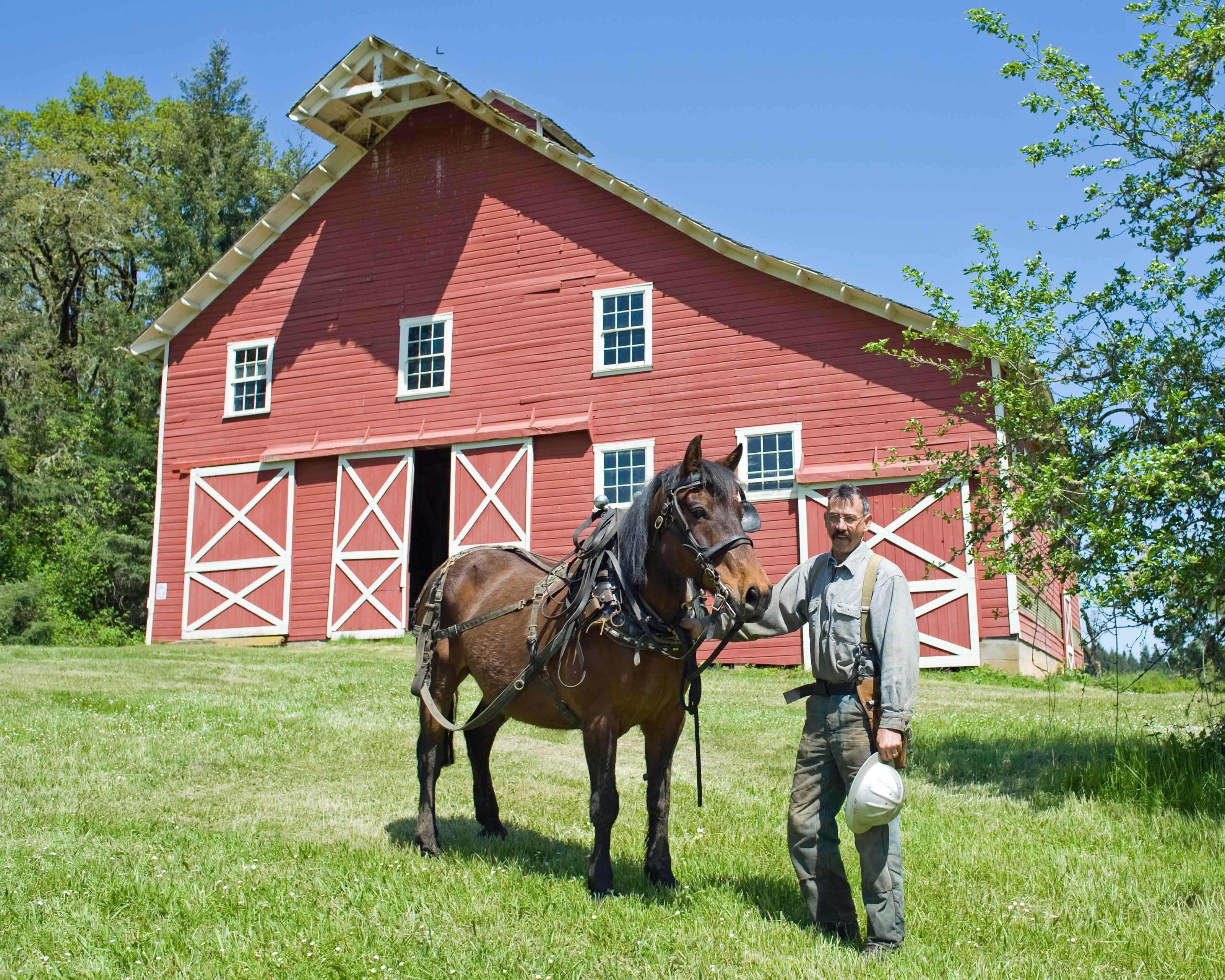 Description Cowboy With Horse In Front Of Barn