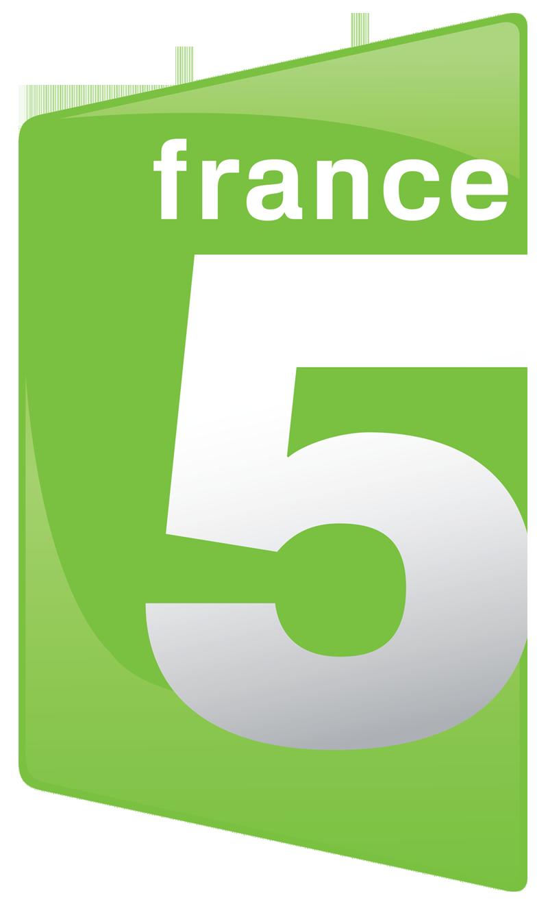 Risultati immagini per france 5 logo png