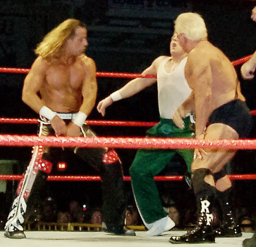 File:HBK-and-Flair-backhand-chops.jpg