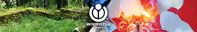 Header - Web - Wikimédia France.jpg