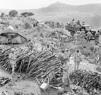 Men of the King's African Rifles collecting surrendered arms at Wolchefit Pass, after the last Italians had ceased resistance in Ethiopia