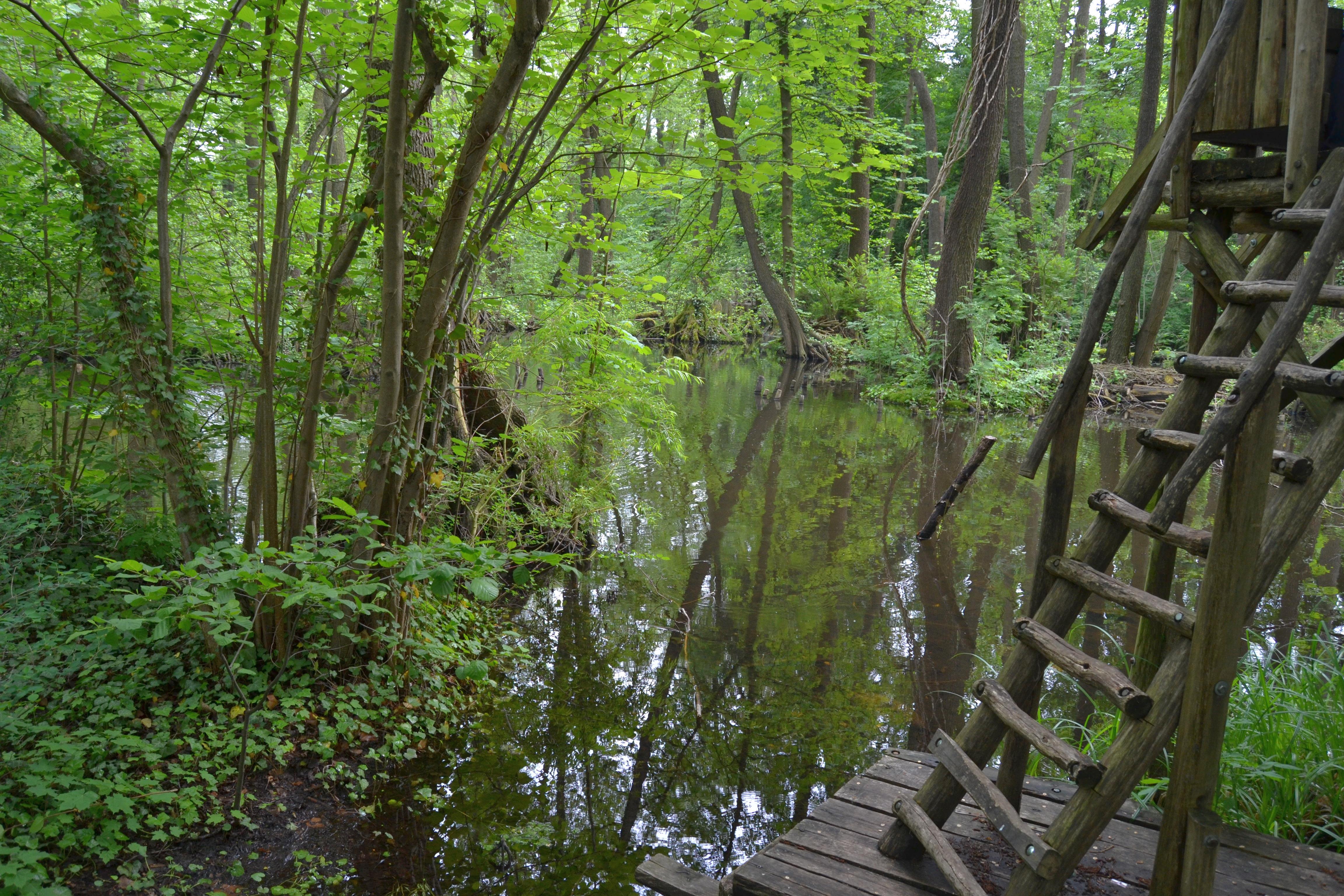 file kleiner spreewaldpark sch neiche 02 jpg wikimedia commons