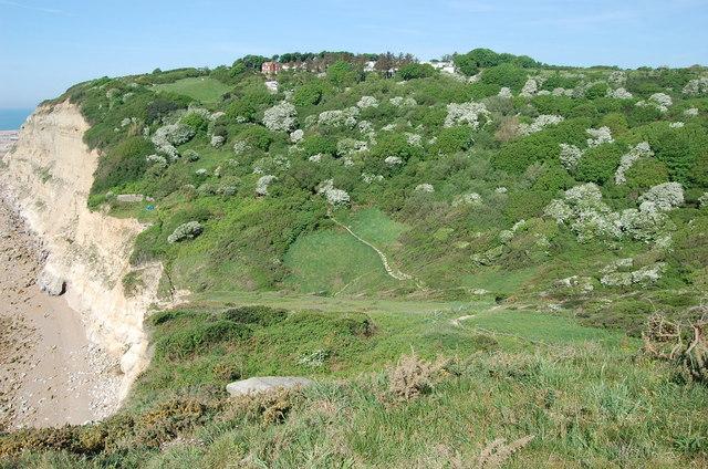 Looking across Ecclesbourne Glen - geograph.org.uk - 798674