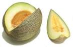 Melon sharlyn.jpg