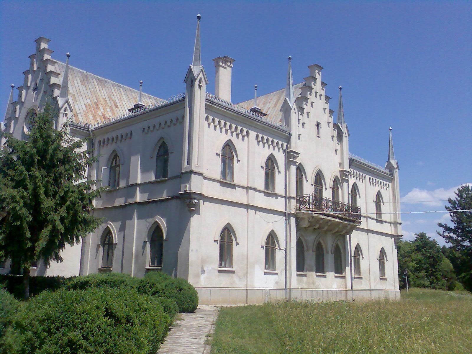 http://upload.wikimedia.org/wikipedia/commons/0/01/Palatul_de_la_Ruginoasa1.jpg