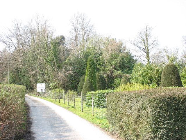 Part of the Treborth Botanical Gardens - geograph.org.uk - 383386