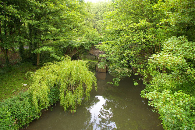 River Frome - geograph.org.uk - 1318452
