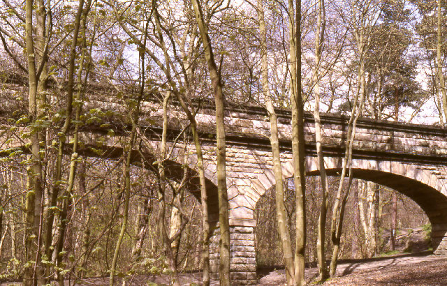 Seven Arches Aqueduct, Adel Woods - geograph.org.uk - 92550