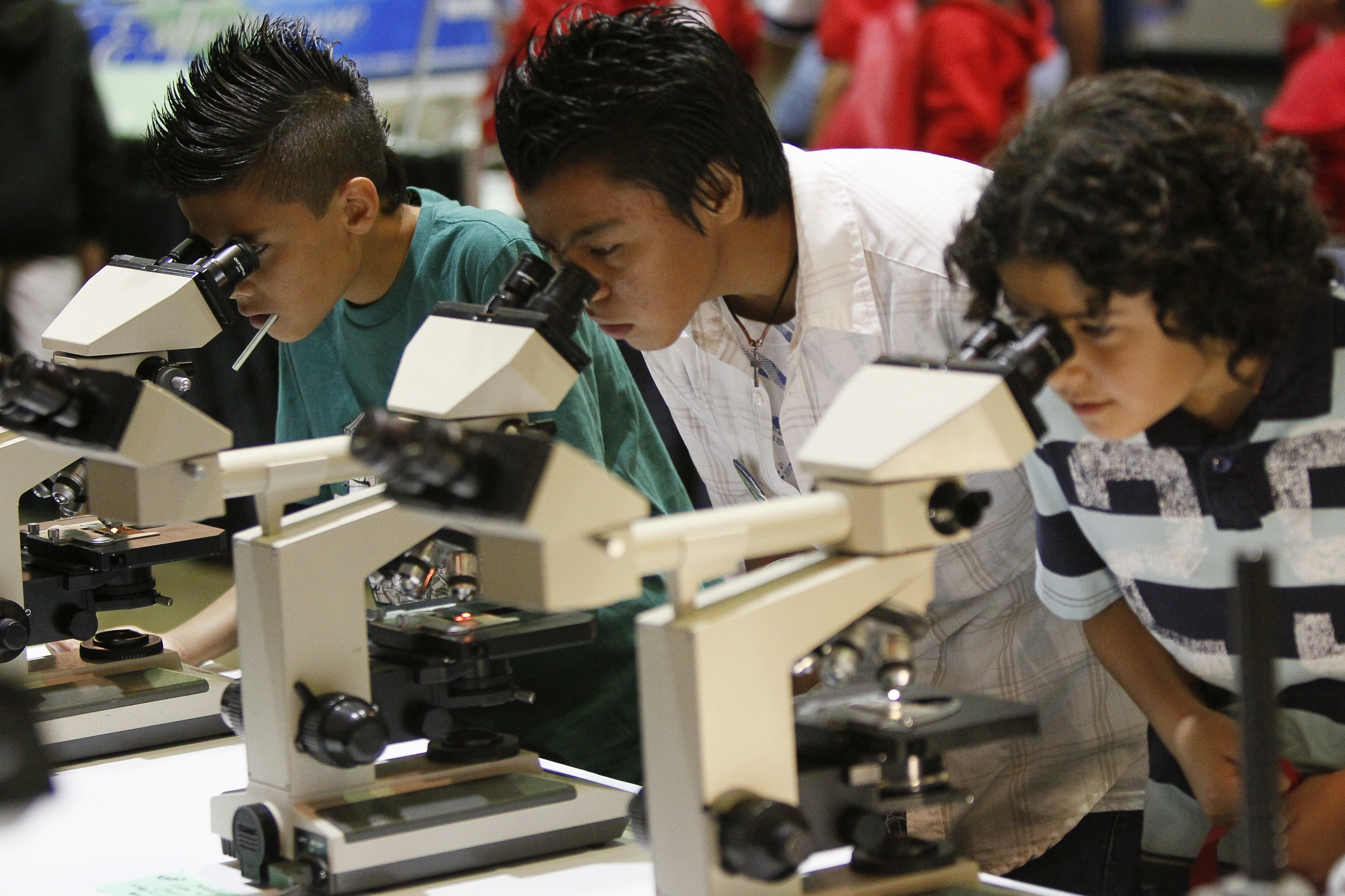 Image result for Student's Microscopes