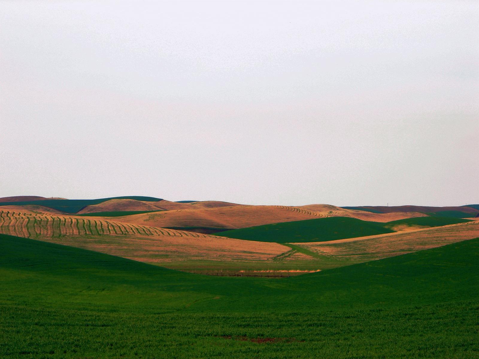 Description Walla Walla Valley.jpg