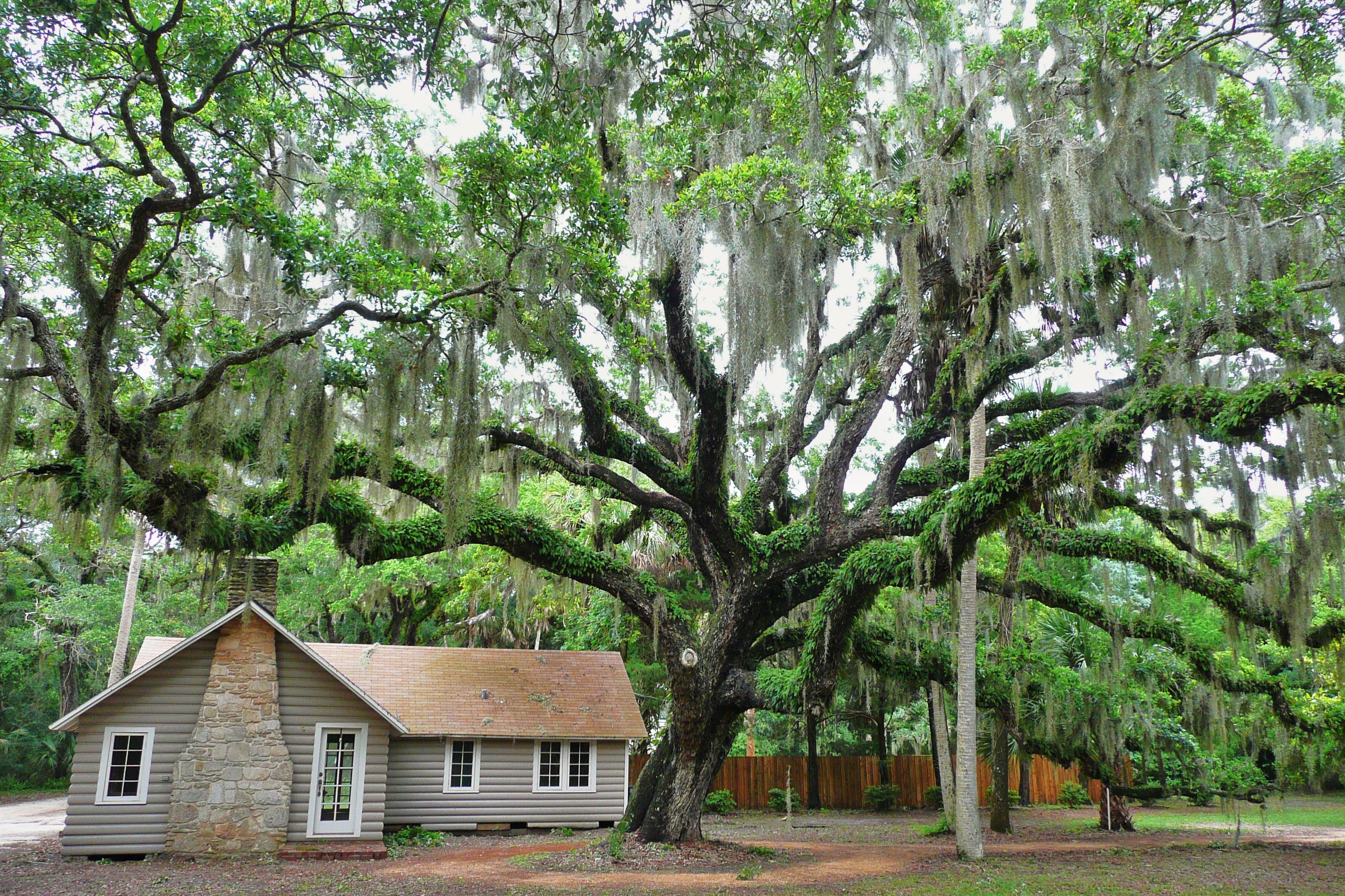 Washington Oaks Gardens State Park - Wikiwand