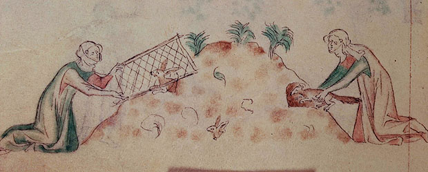 File:Women hunting rabbits with a ferret.jpg