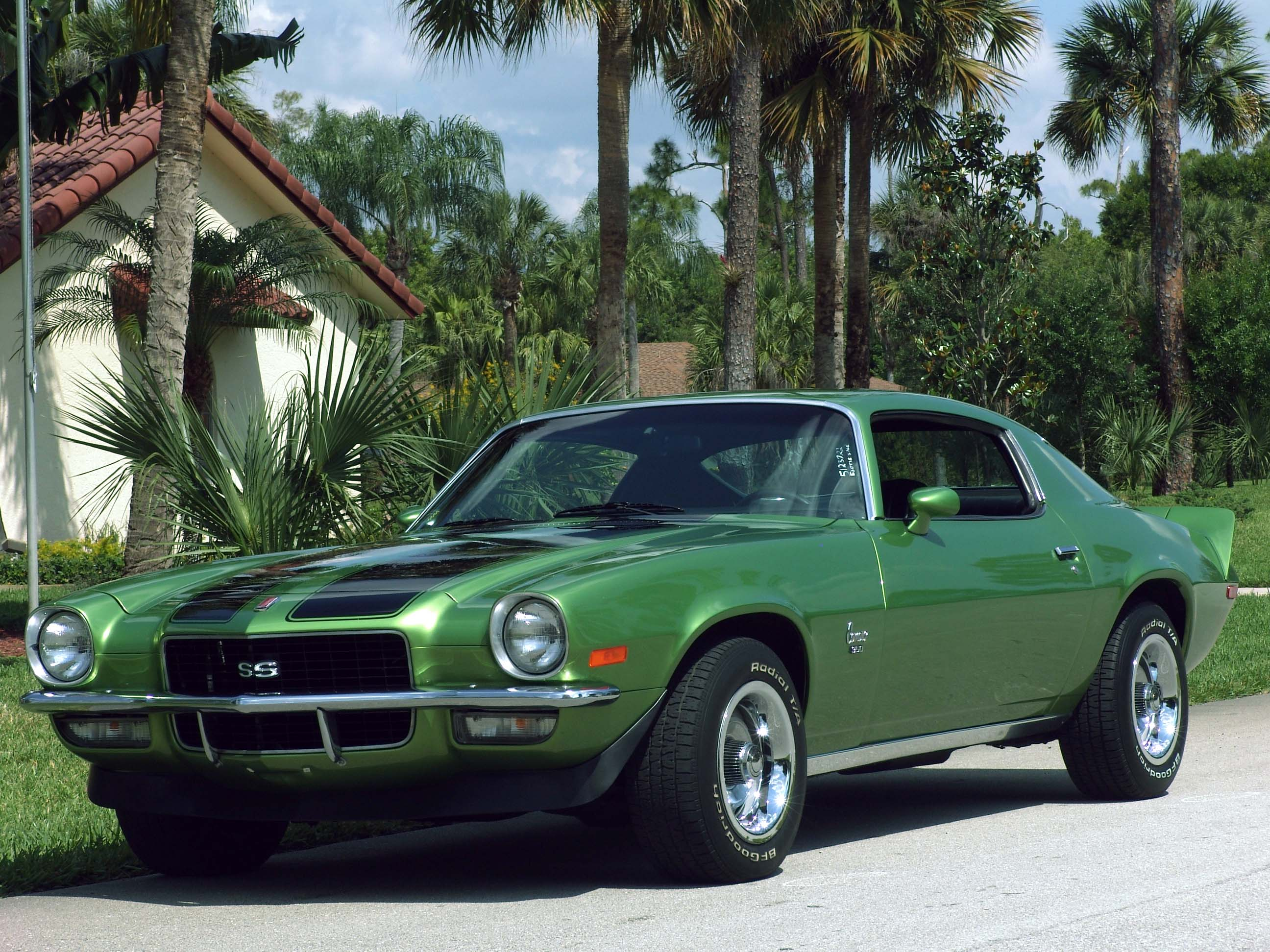 File 1971 Camaro Ss Jpg Wikimedia Commons