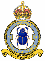 No. 64 Squadron RAF Defunct flying squadron of the Royal Air Force