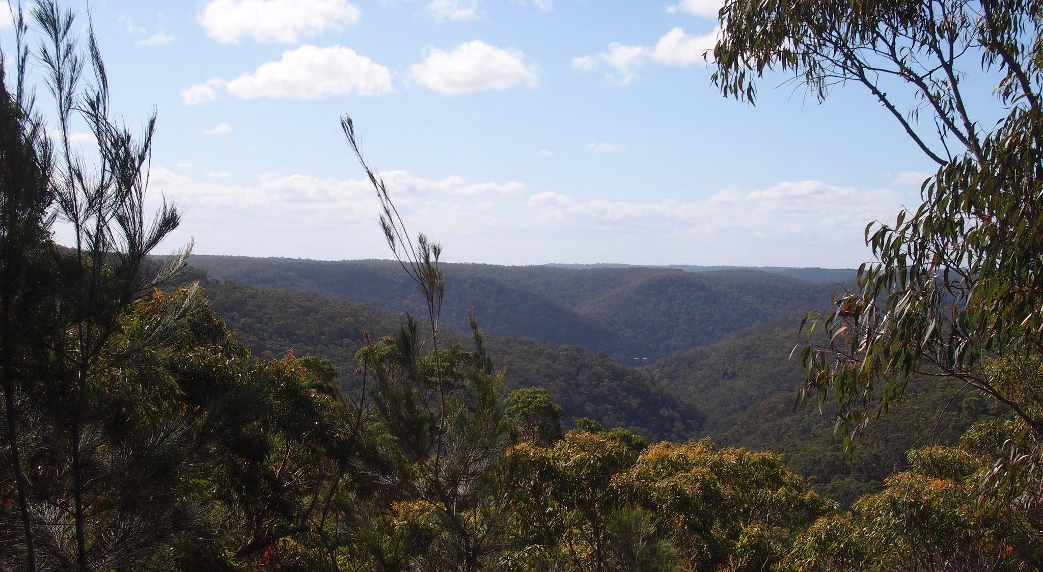 Images - Muogamarra nature reserve