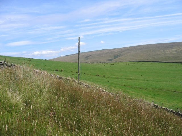 A view from the Ribble Way - geograph.org.uk - 644261