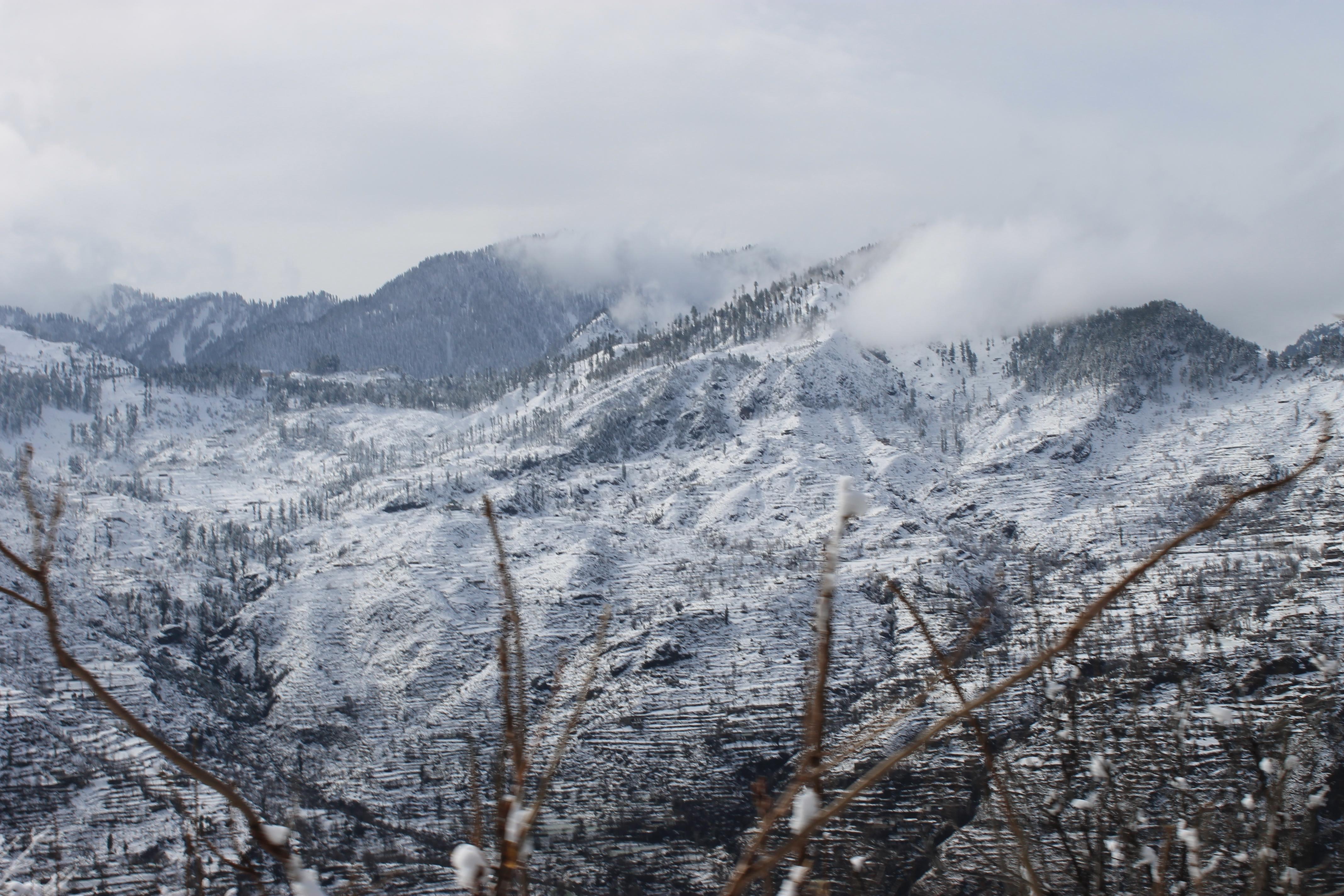 File:Beauty of nature at Malam Jabba.JPG - Wikimedia Commons