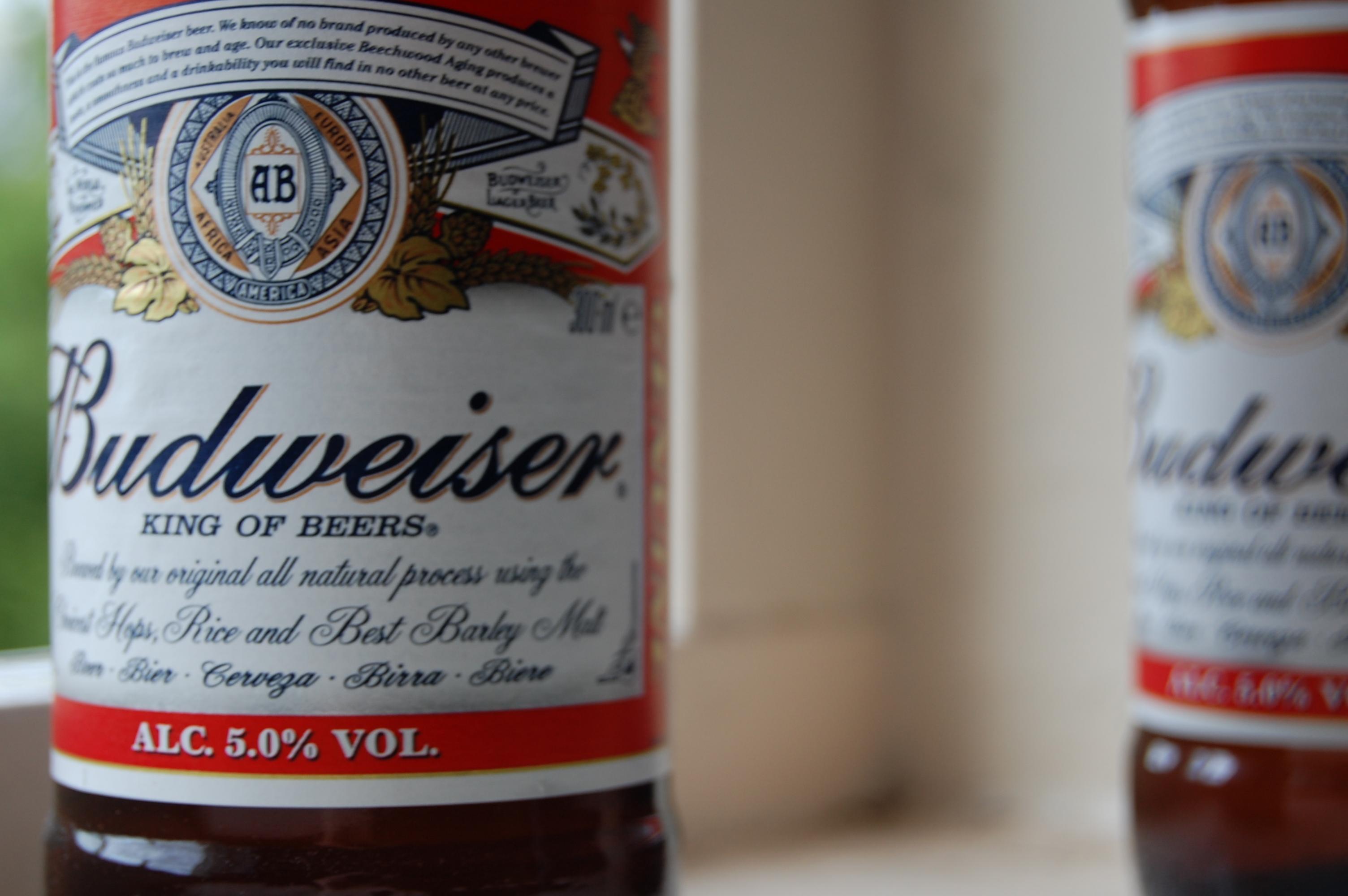 filebudweiser bottle close upjpg With budweiser bottle size