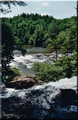 La Chattooga près des chutes de Dick's Creek