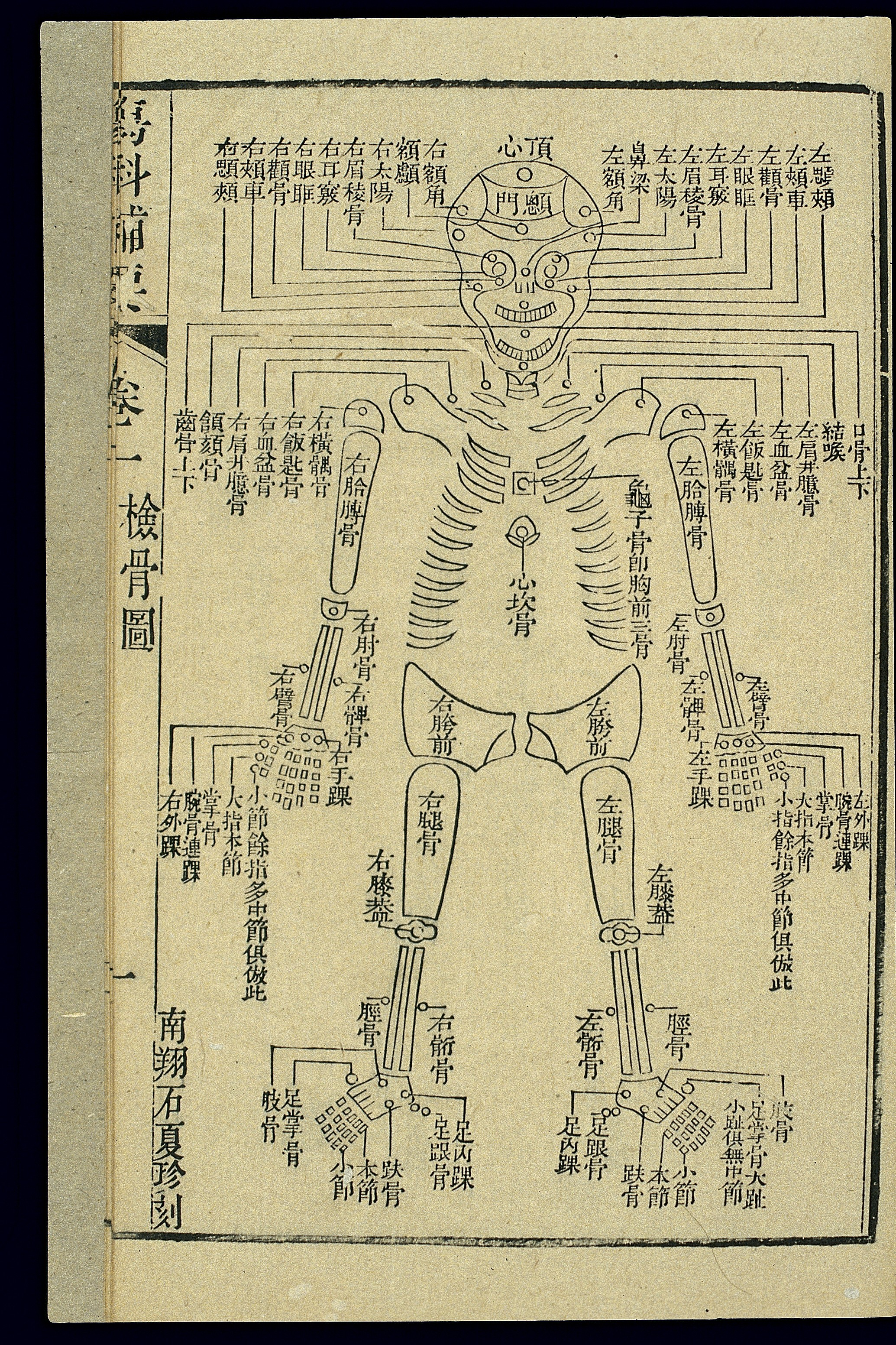 Chinese Horoscope Chart: Chinese C19 woodcut; Forensic chart of the skeleton (front ,Chart