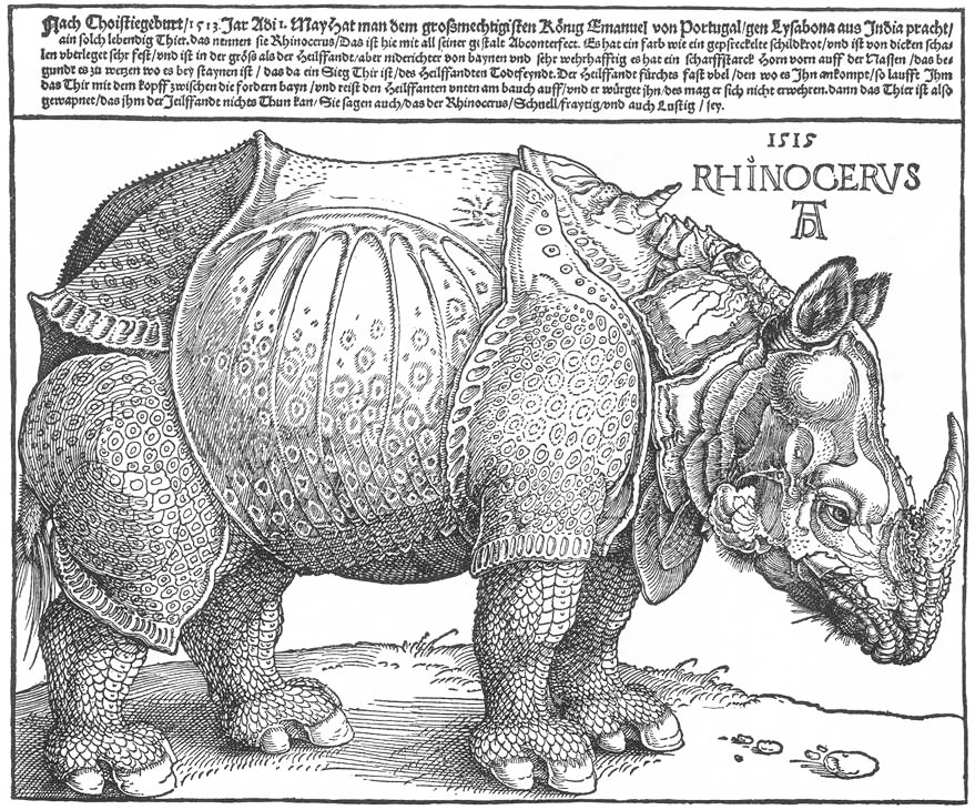 The Rhinoceros. Woodcut by  Albrecht Dürer (1515)