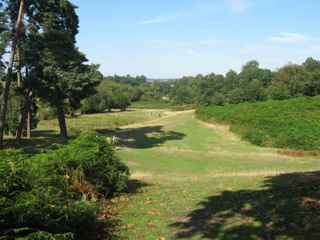Footpath in Knole Park - geograph.org.uk - 1451398