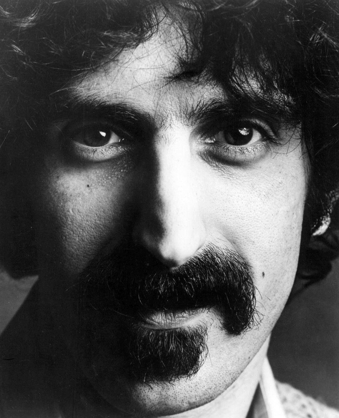 zappa beard - photo #40