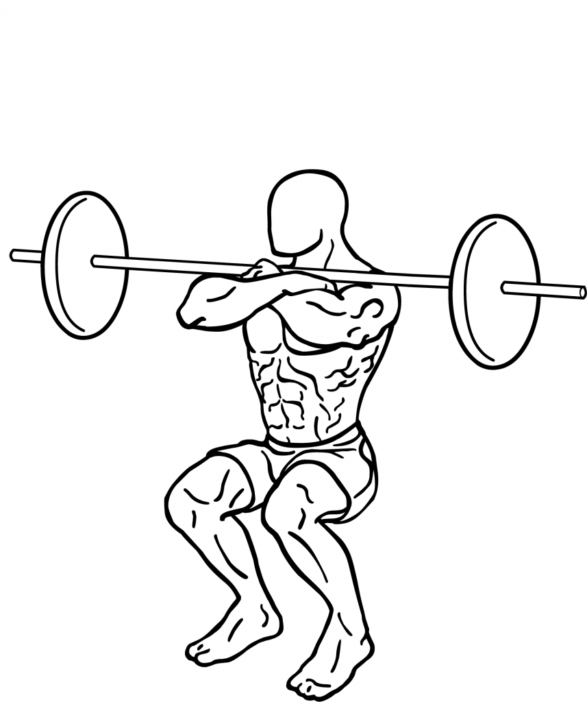 File:Front-squat-2-857x1024.png - Wikimedia Commons