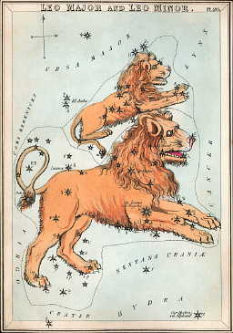 English: Leo as depicted in Urania's Mirror, a...