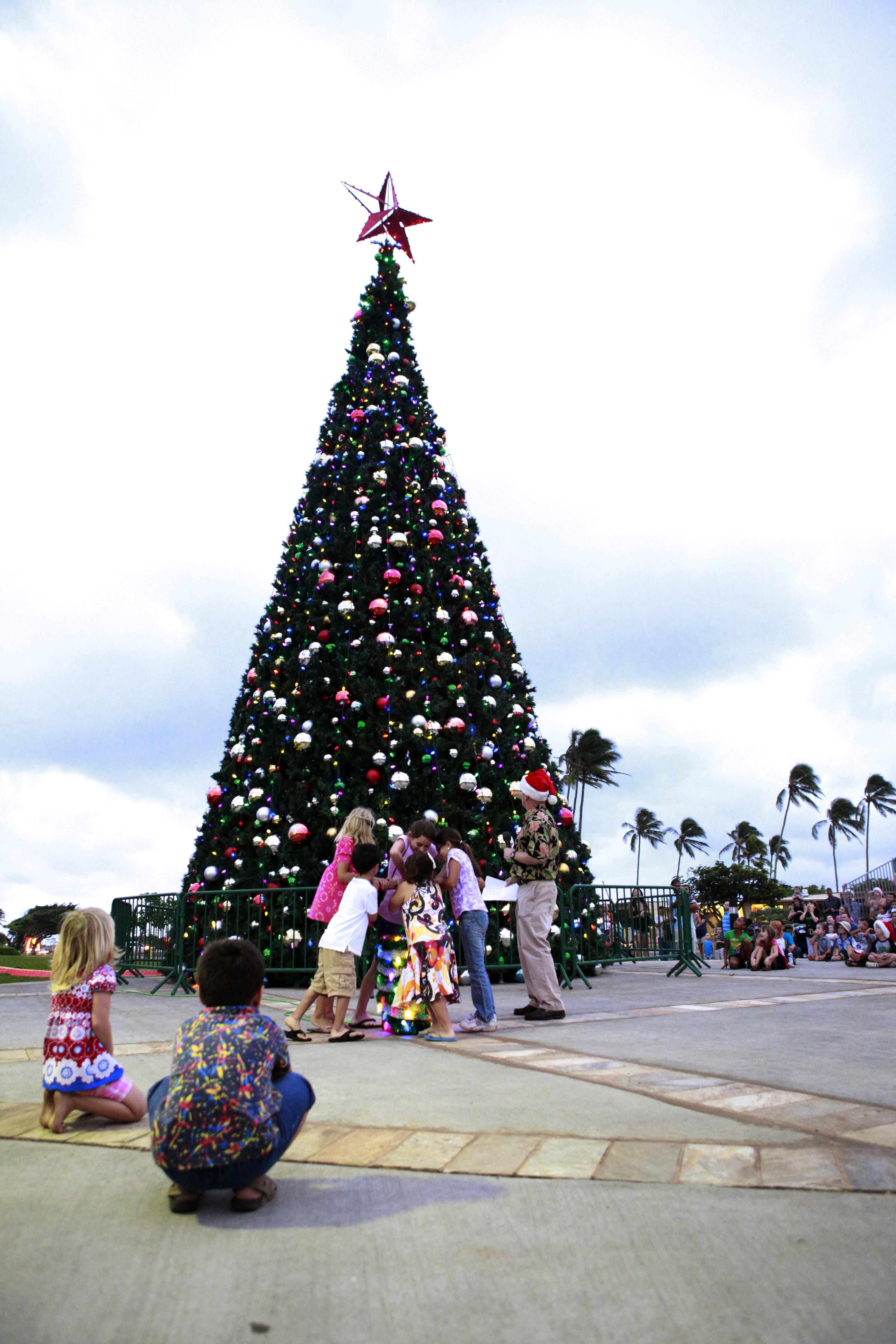 Christmas Tree Hawaii Part - 19: File:MCB Hawaii Christmas Tree Lighting 111204-M-DX861-026.jpg