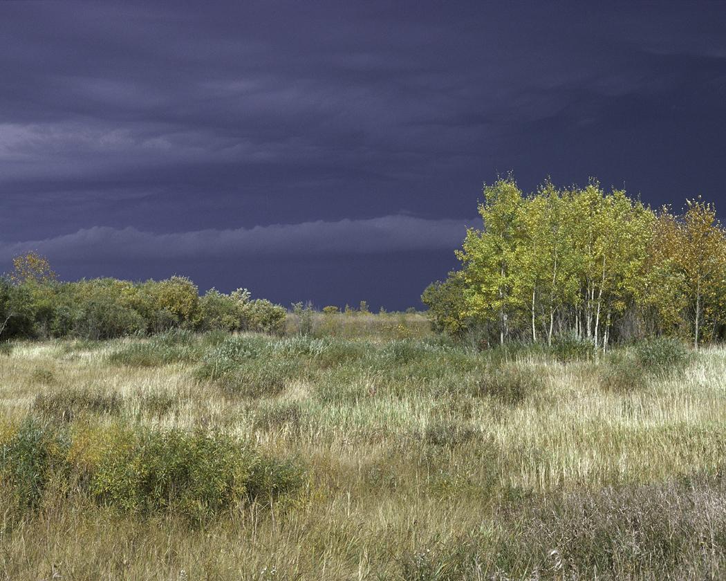 Agassiz National Wildlife Refuge - Wikipedia