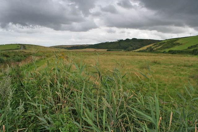 Pasture at Mawgan Porth - geograph.org.uk - 1432777