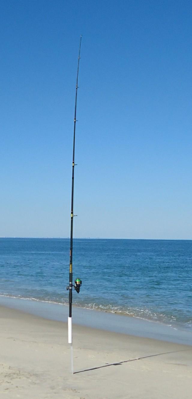 Fisherman S Beach Dog Beach San Luis Obispo Ca