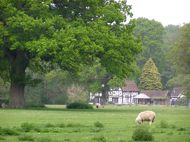 The Old Mill, Brockenhurst, New Forest - geograph.org.uk - 170824