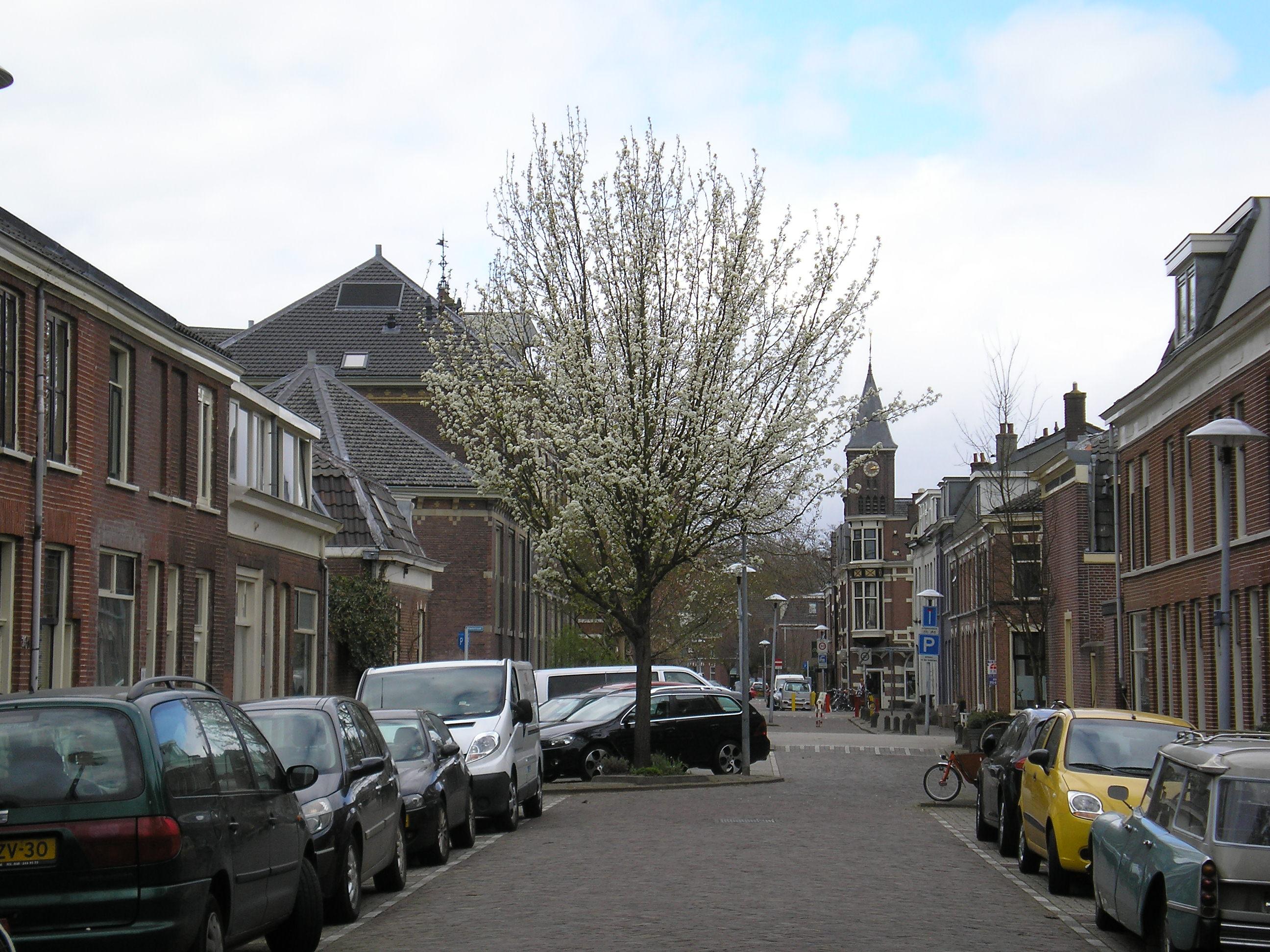 Bollenhofsestraat