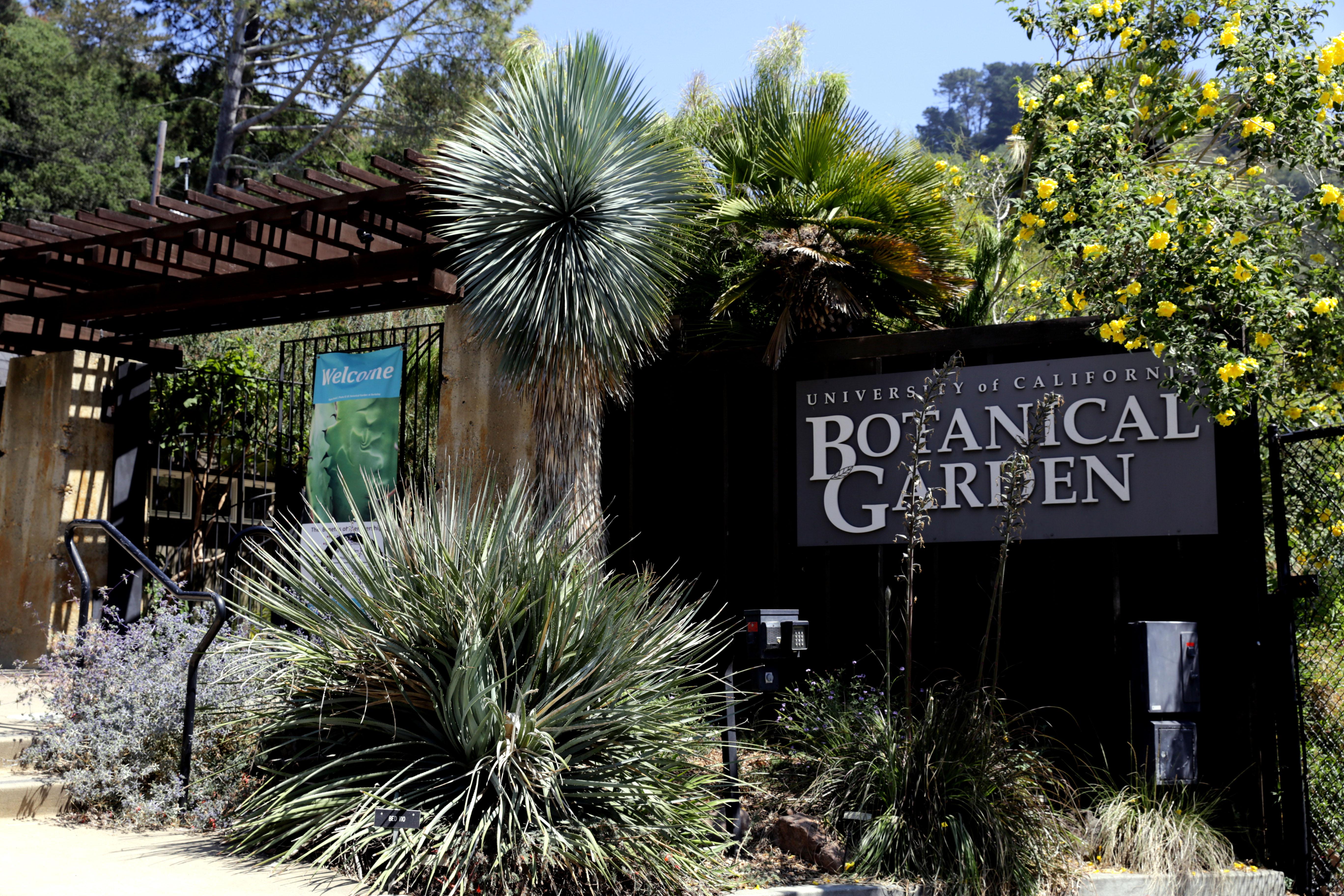 University of California Botanical Garden Wikiwand