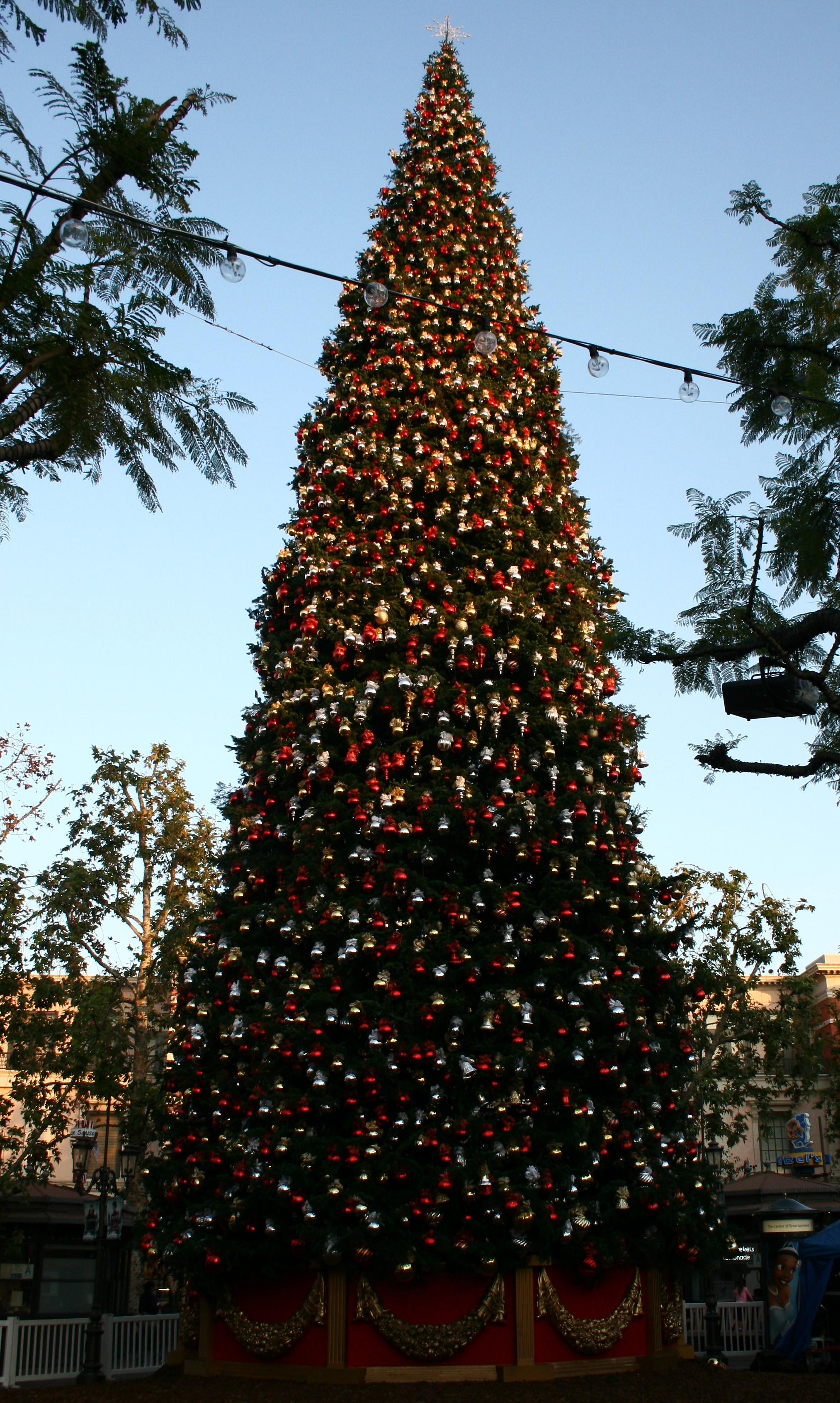 grove christmas tree wikipedia grove christmas tree wikipedia