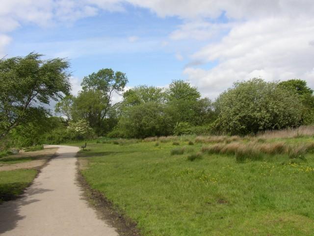 Far end of Yeadon Tarn - geograph.org.uk - 176990