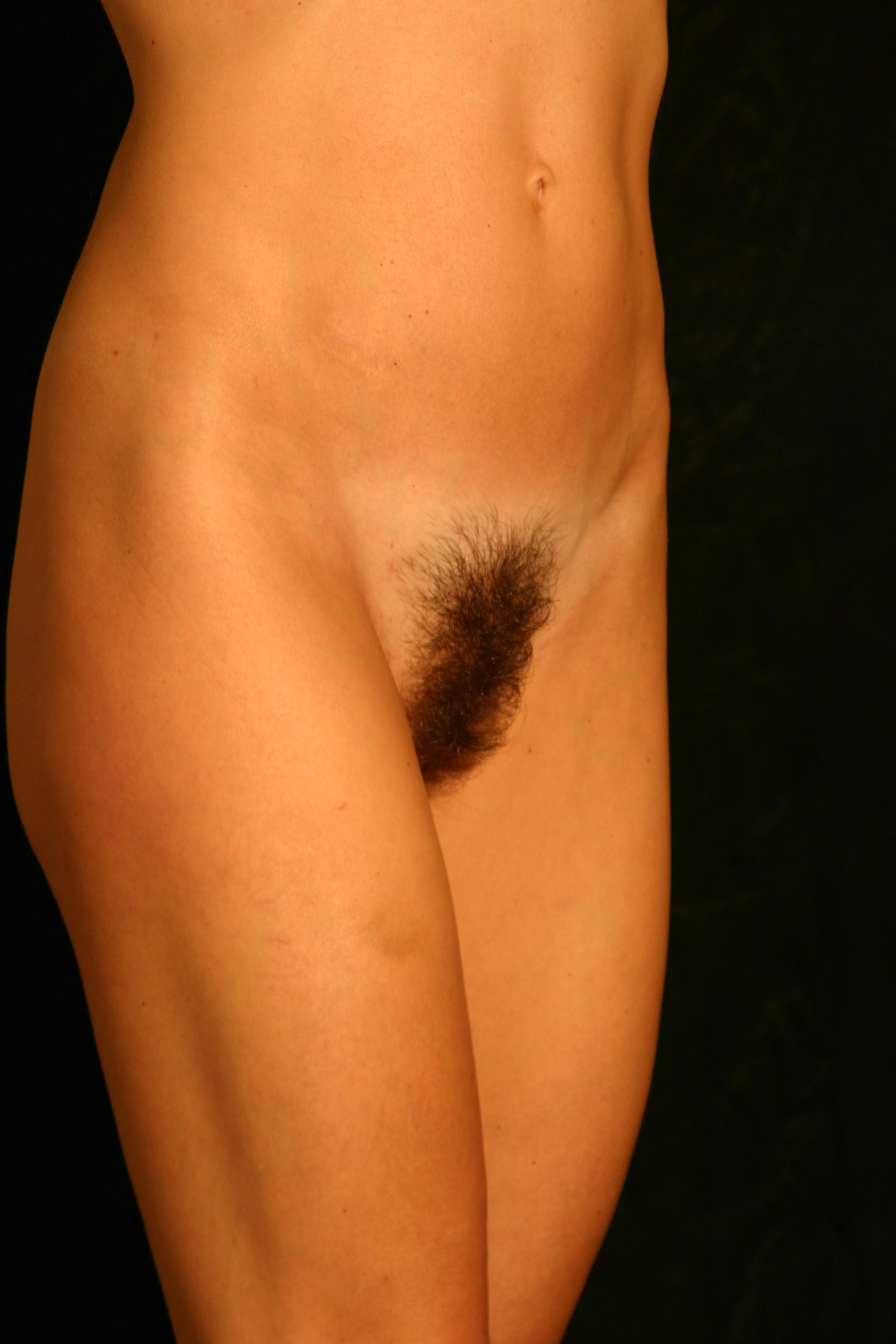Hairy Pubic Area Women 80